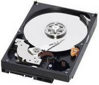 Trdi disk WD Blue 1 TB, 7200 rpm, 64 MB, SATA III